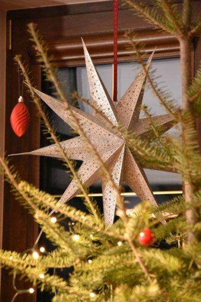 Gwiazda papierowa - srebrna | boze-narodzenie |
